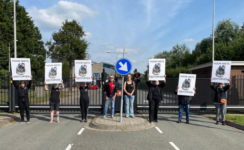Animal Rights wil sluiting van de apenhel BPRC