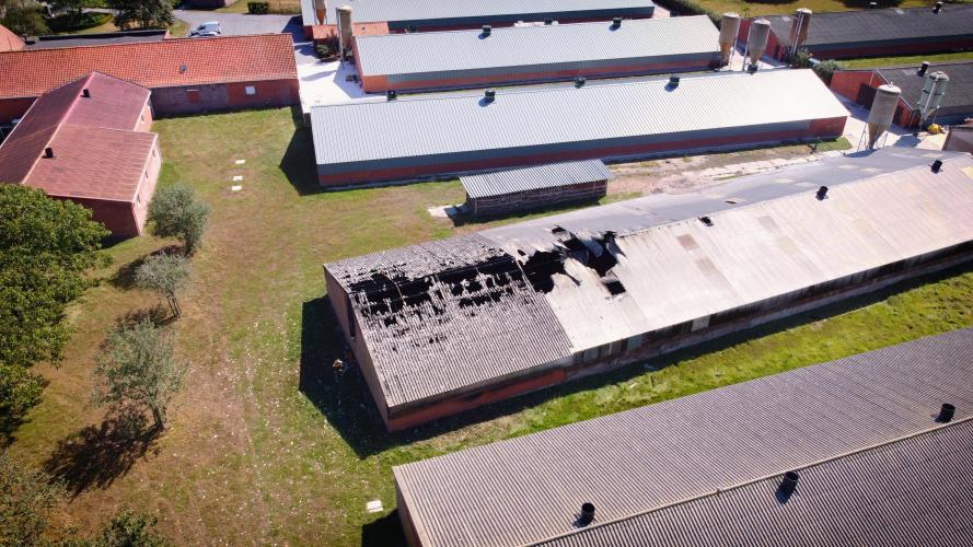 De uitgebrande kippenstal eiste 4500 levens