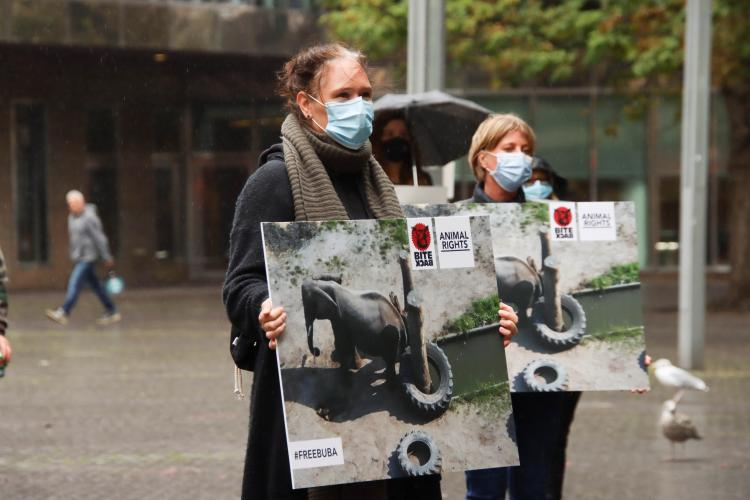 Animal Rights en Bite Back organiseerden een demo voor Buba