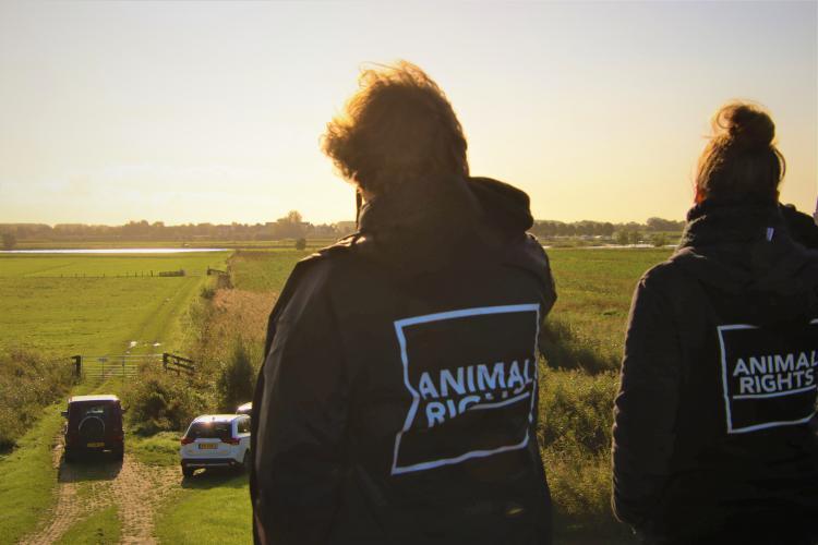 Animal Rights monitort de jacht.