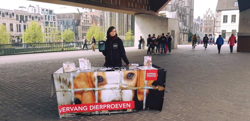 Informatiestand in Gent