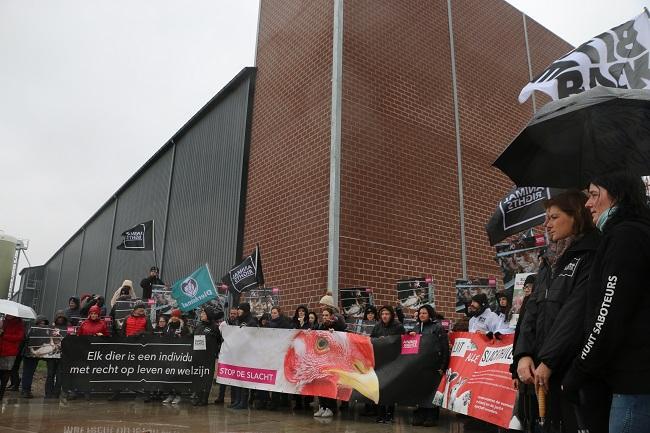 Protest bij een horror-schuur vol leghennen