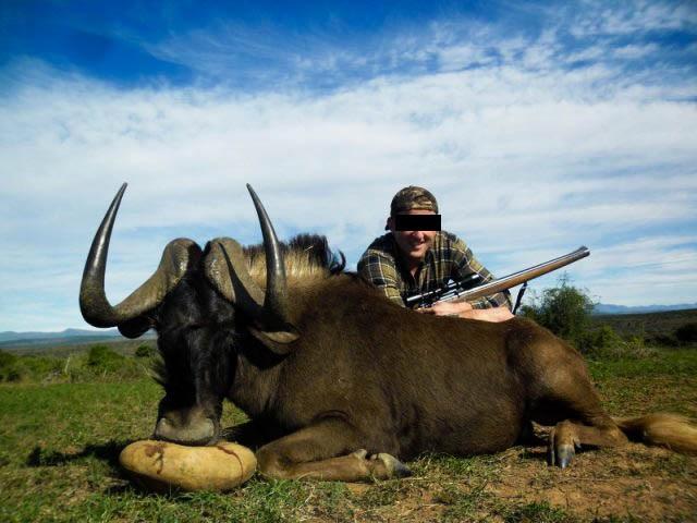 Belgische jager, via Umlilo Safaris (2014).