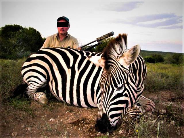 Je doodt individuele dieren alsof zij er niet toe doen.